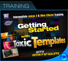 Toxic Template Training