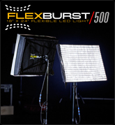 Digital Juice FlexBurst 500
